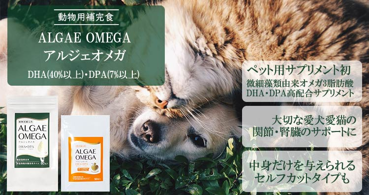 動物用補完食アルジェオメガ